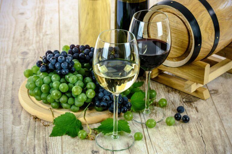 les vins biodynamiques